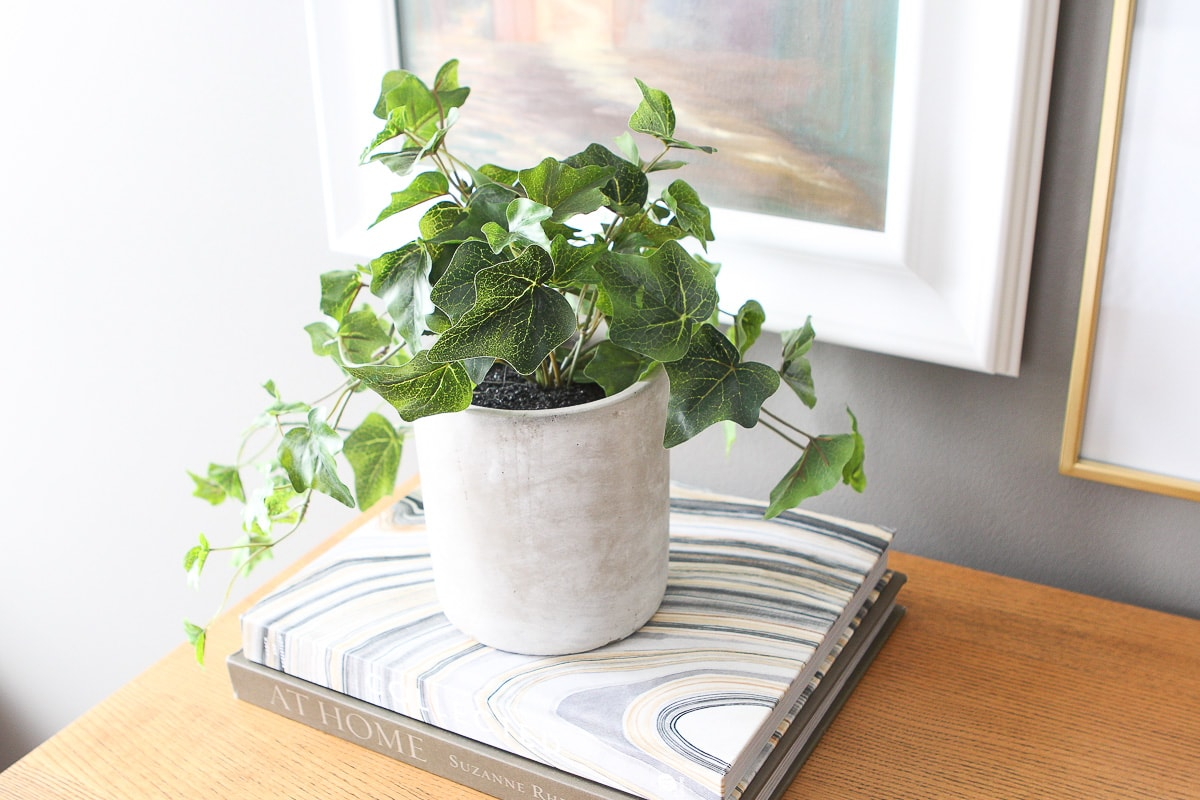 Faux plant on coffee table books
