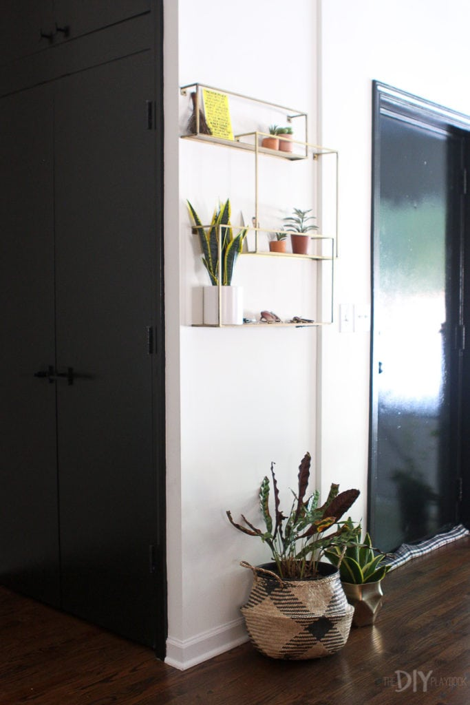 Shelf and plants in an entryway