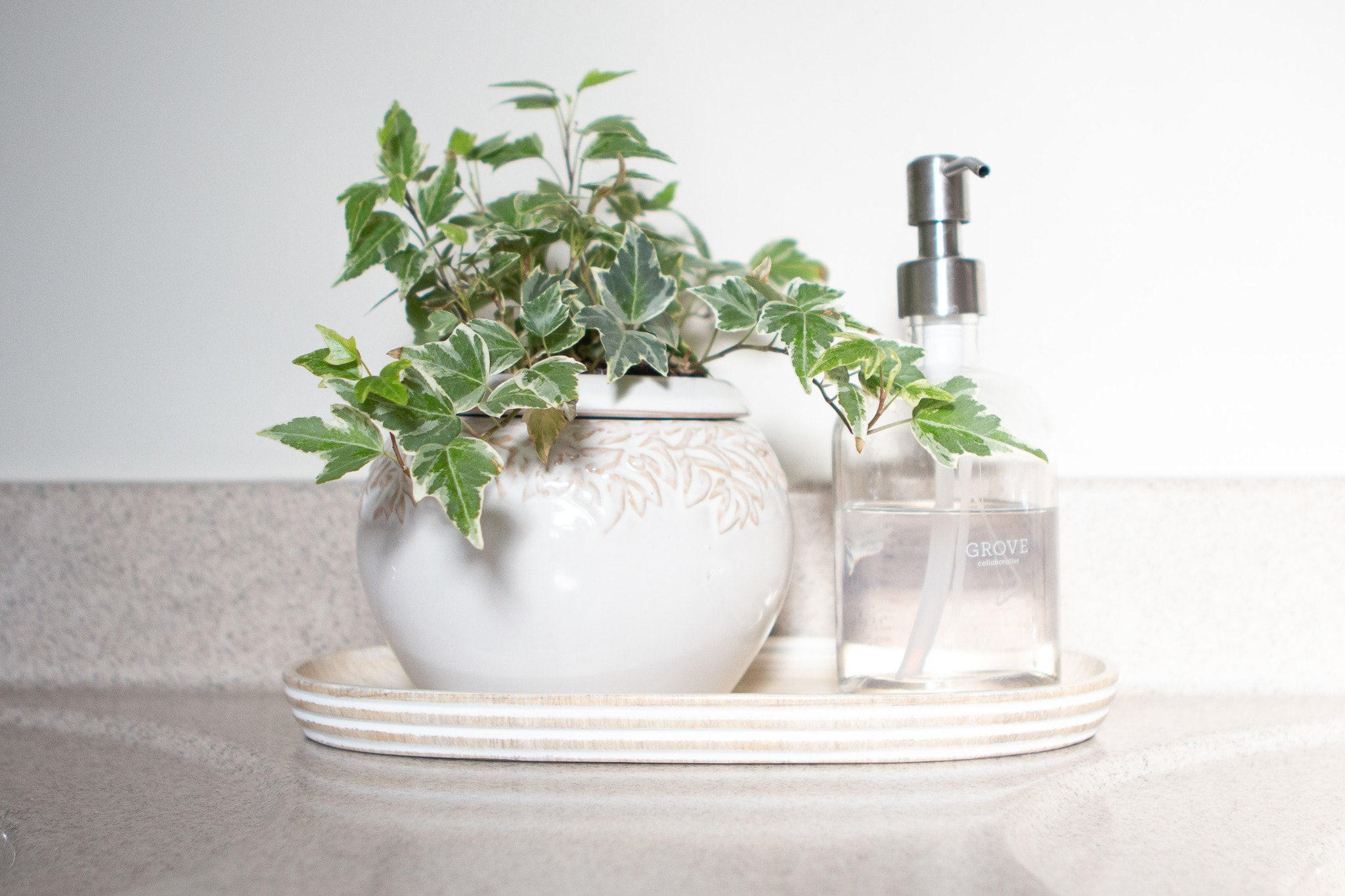 Plant and soap dispenser