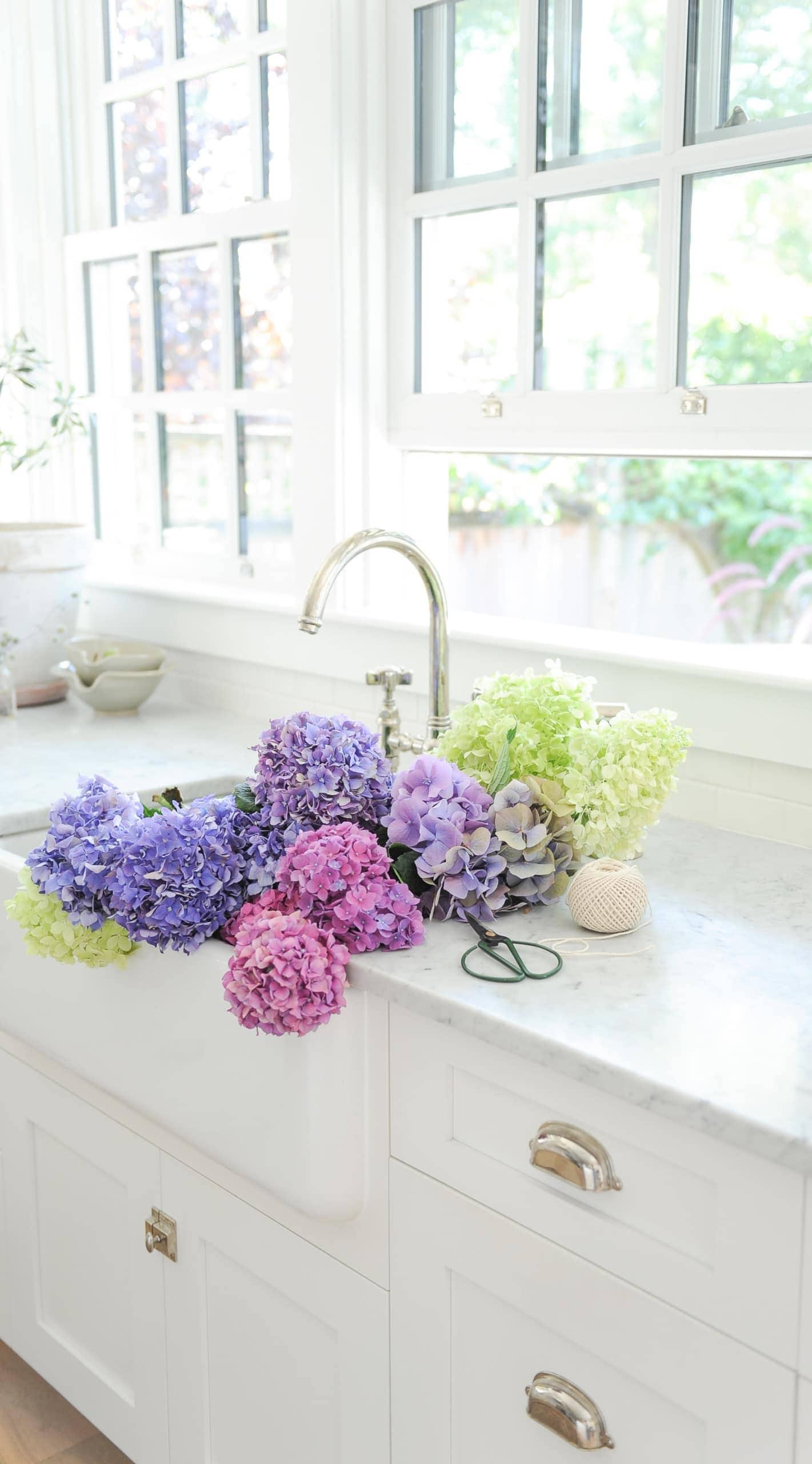 Purple hydrangeas in a white sink
