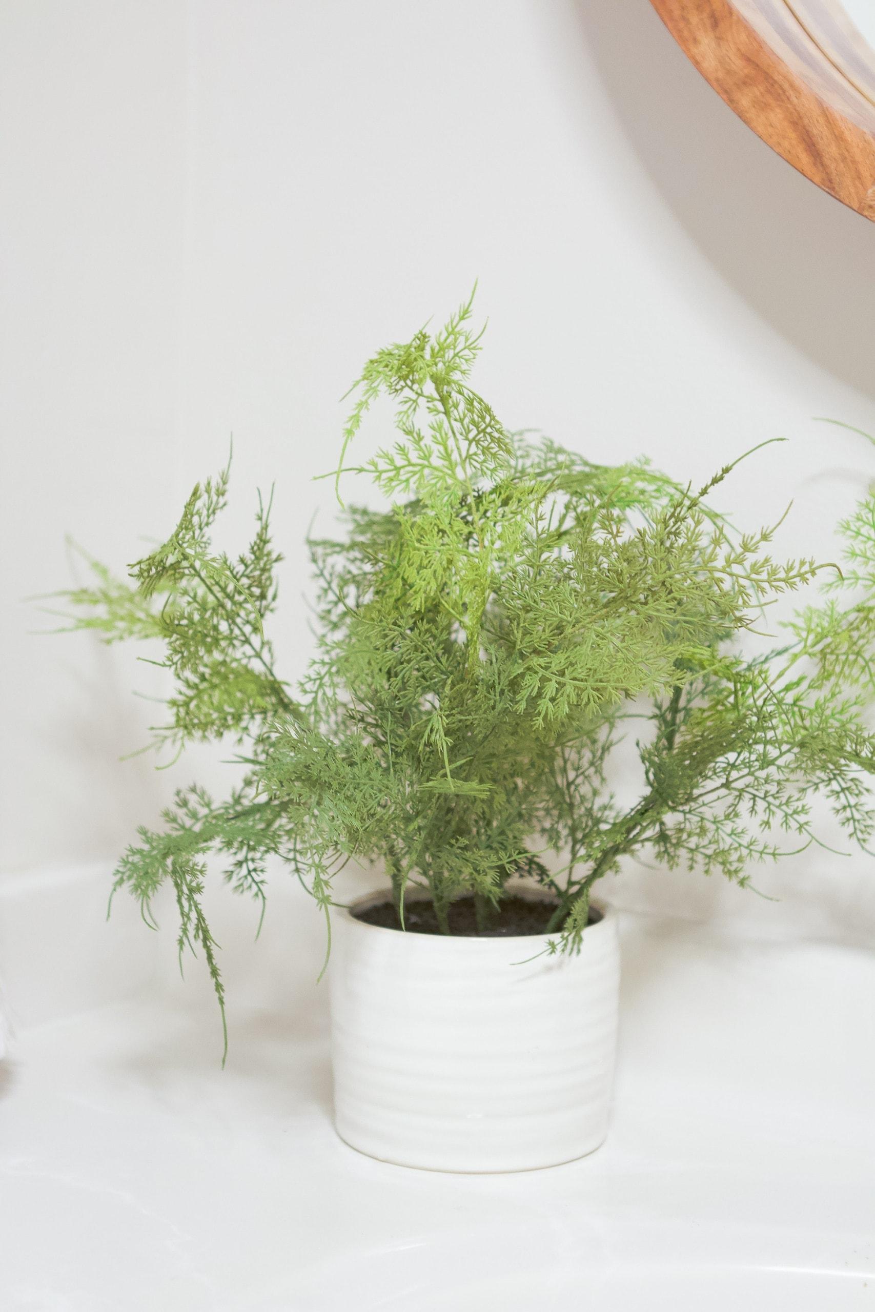 New faux plant
