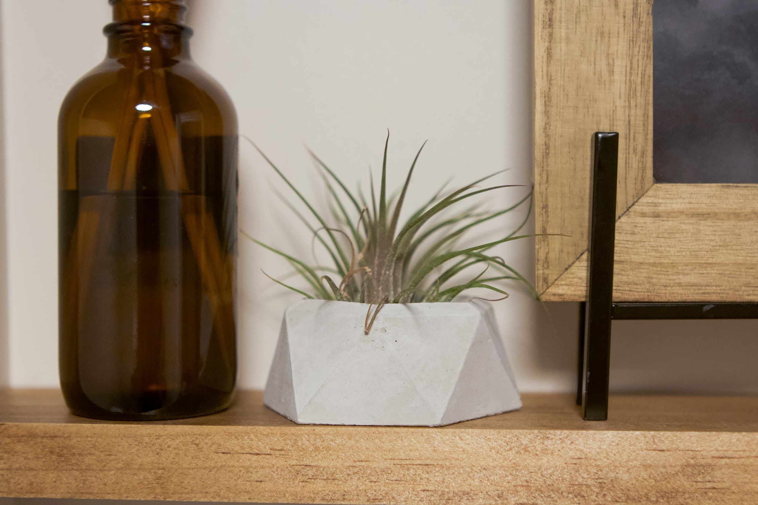 Small concrete air planter