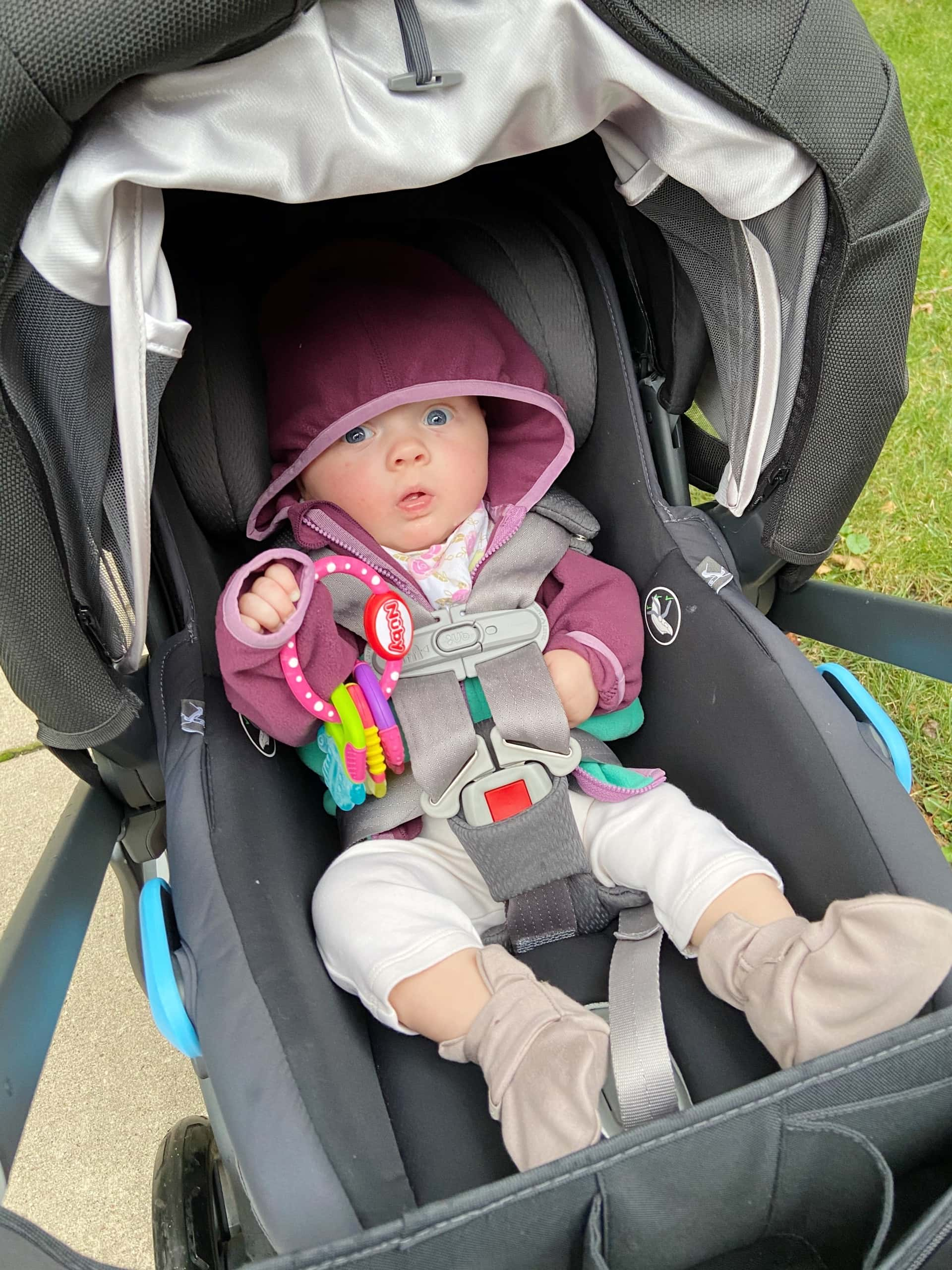 Walks in the stroller with Rory