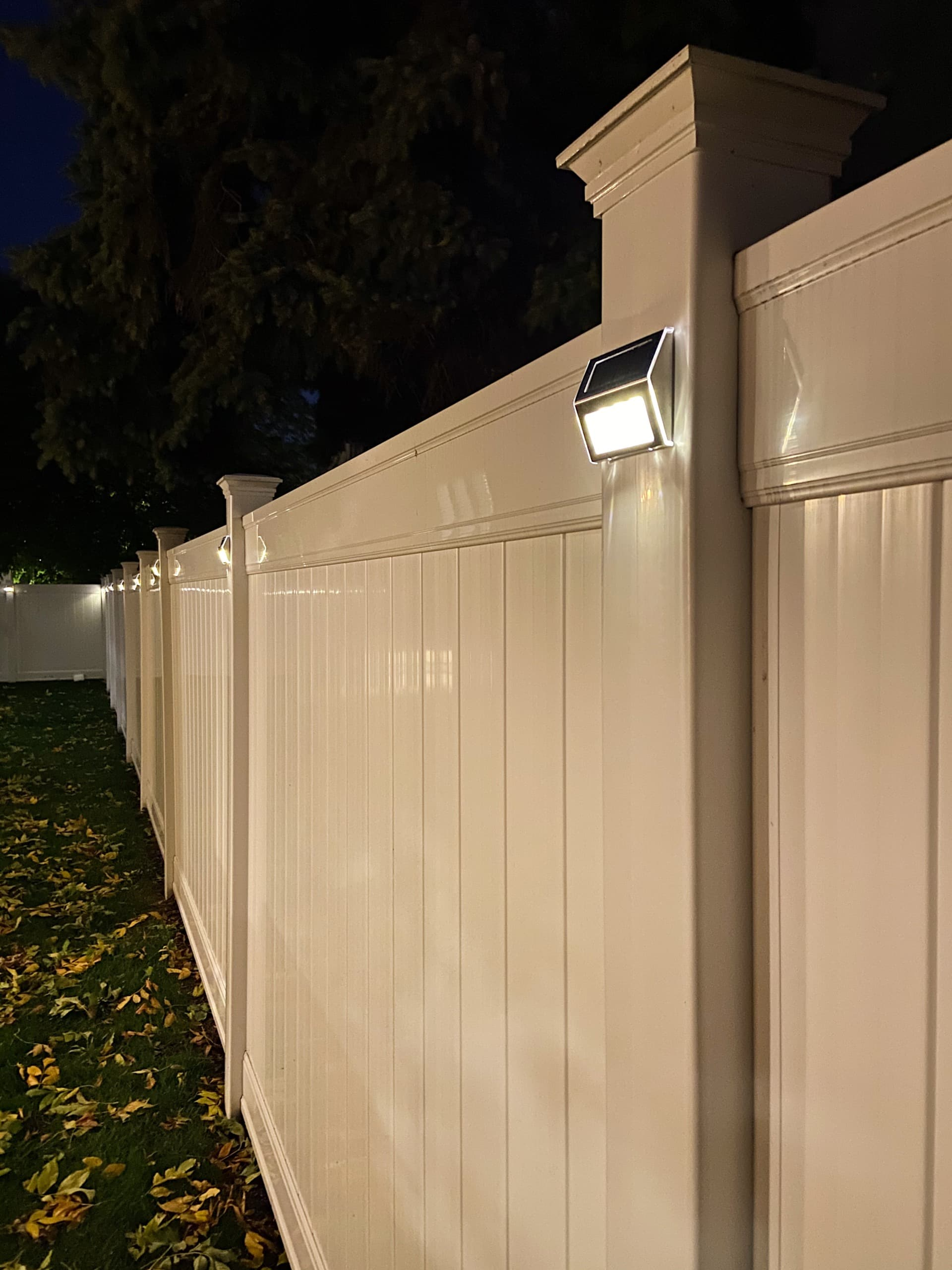 Solar lights in our backyard