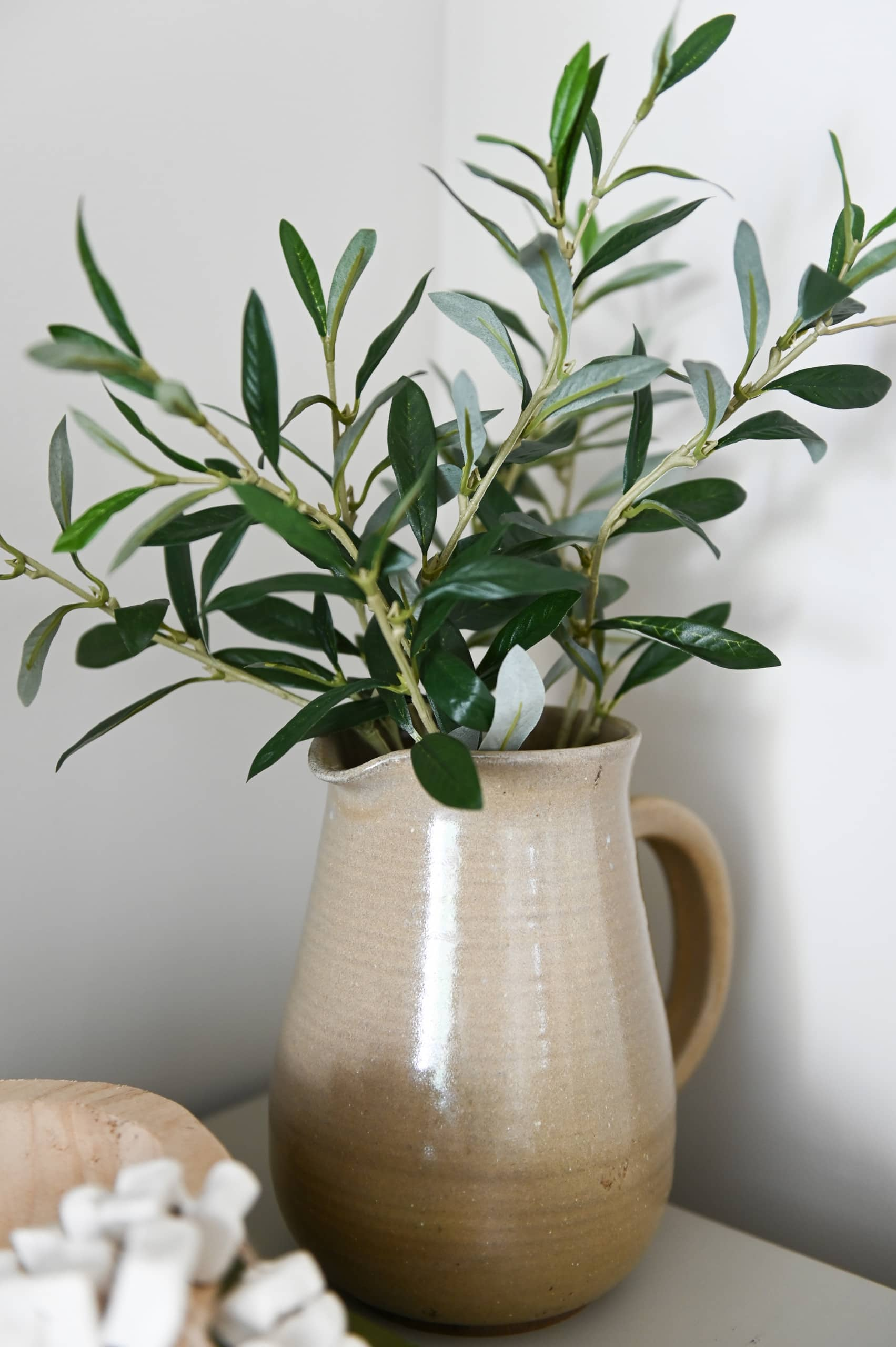 green plants in a vase