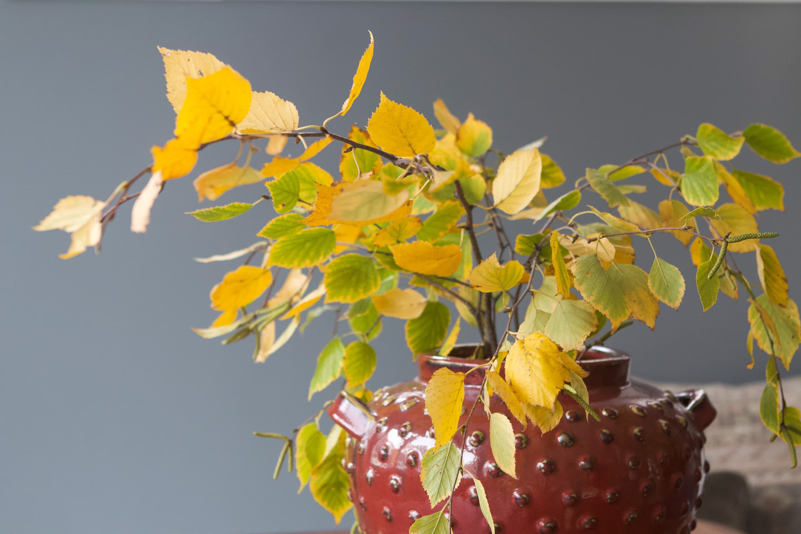 Fall leaves in a large vase