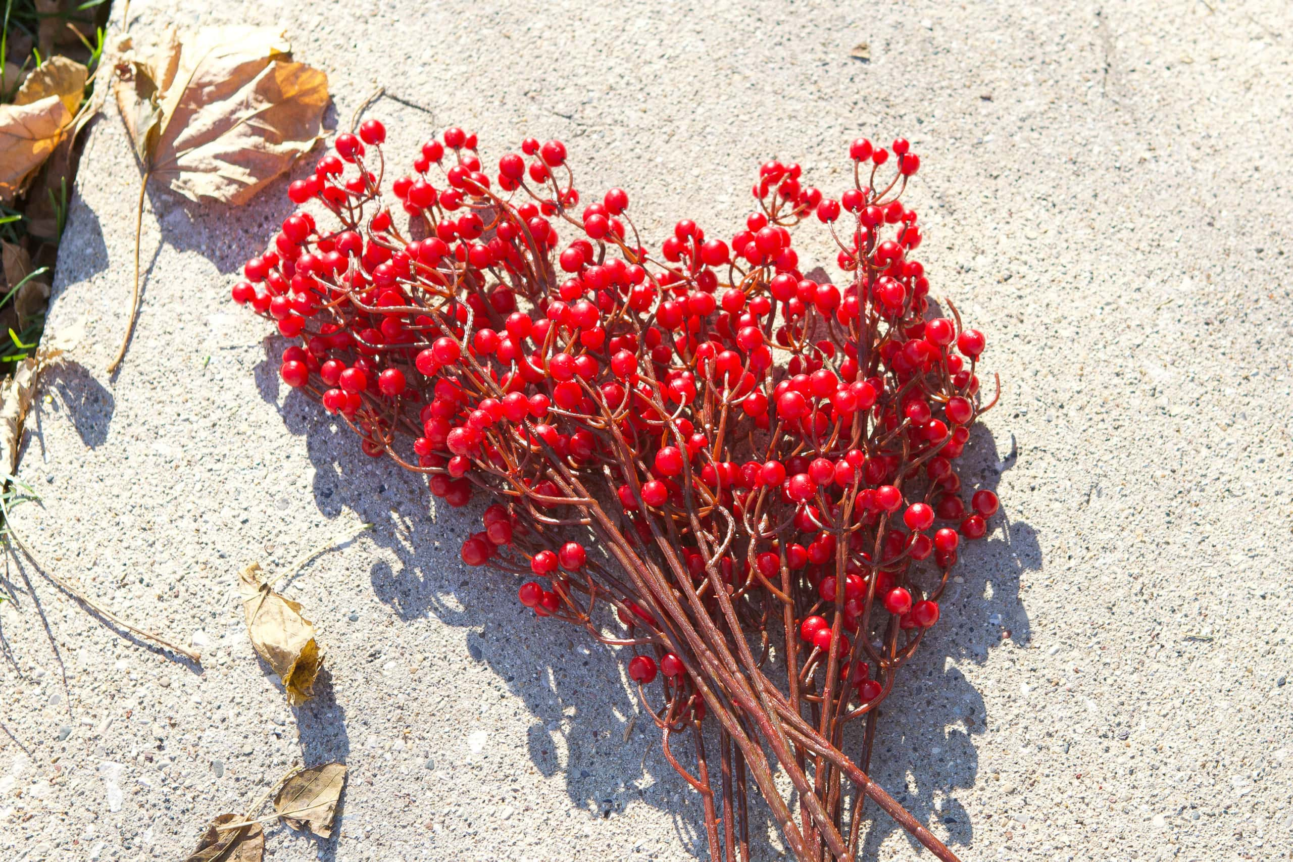 Faux berries
