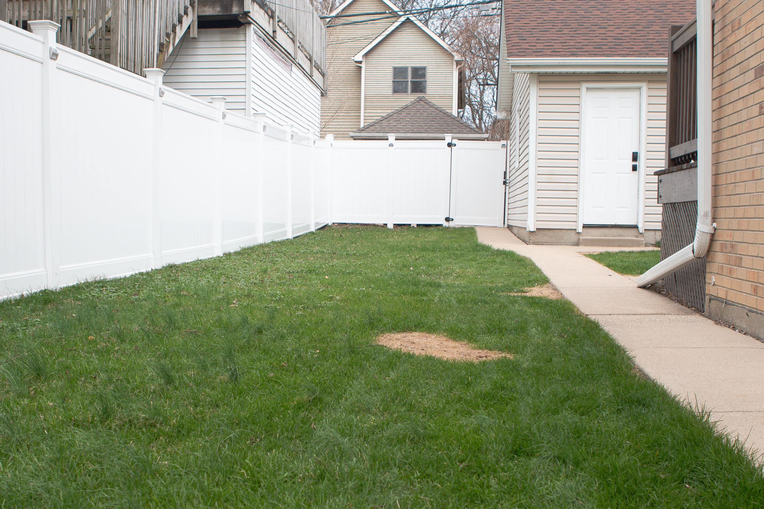 Our lawn before