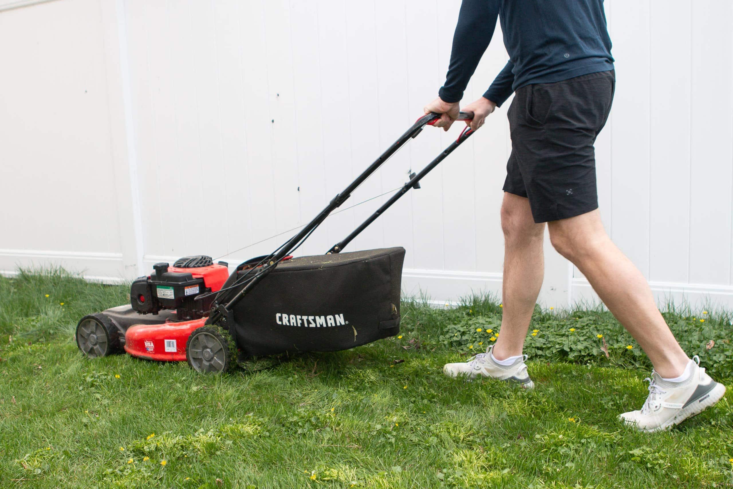 Finn mowing the lawn