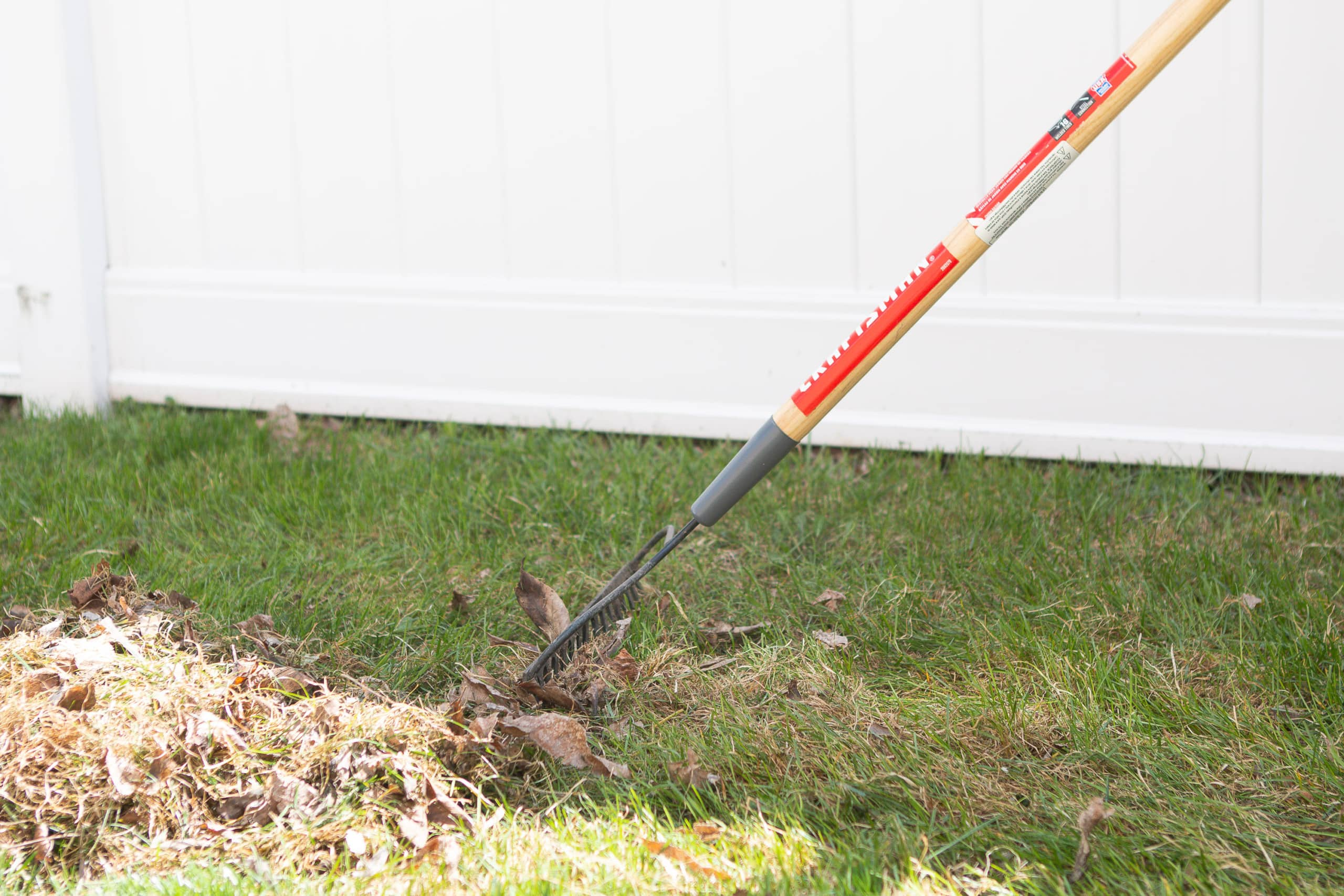 Make sure to rigorously rake your lawn before applying the products