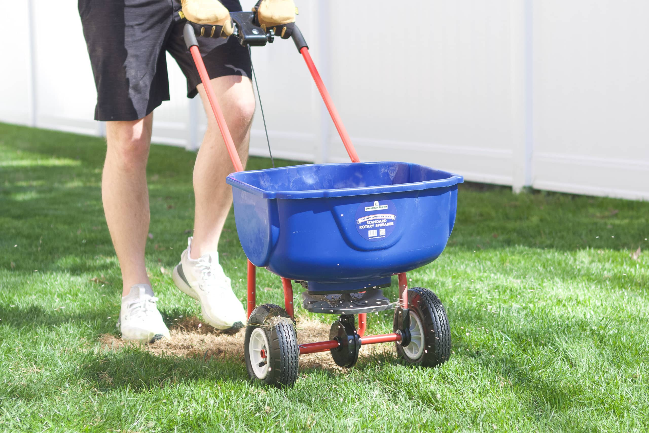 Using the spreader to apply grass seed