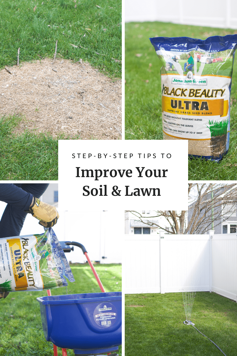 Tips to prep your lawn for spring