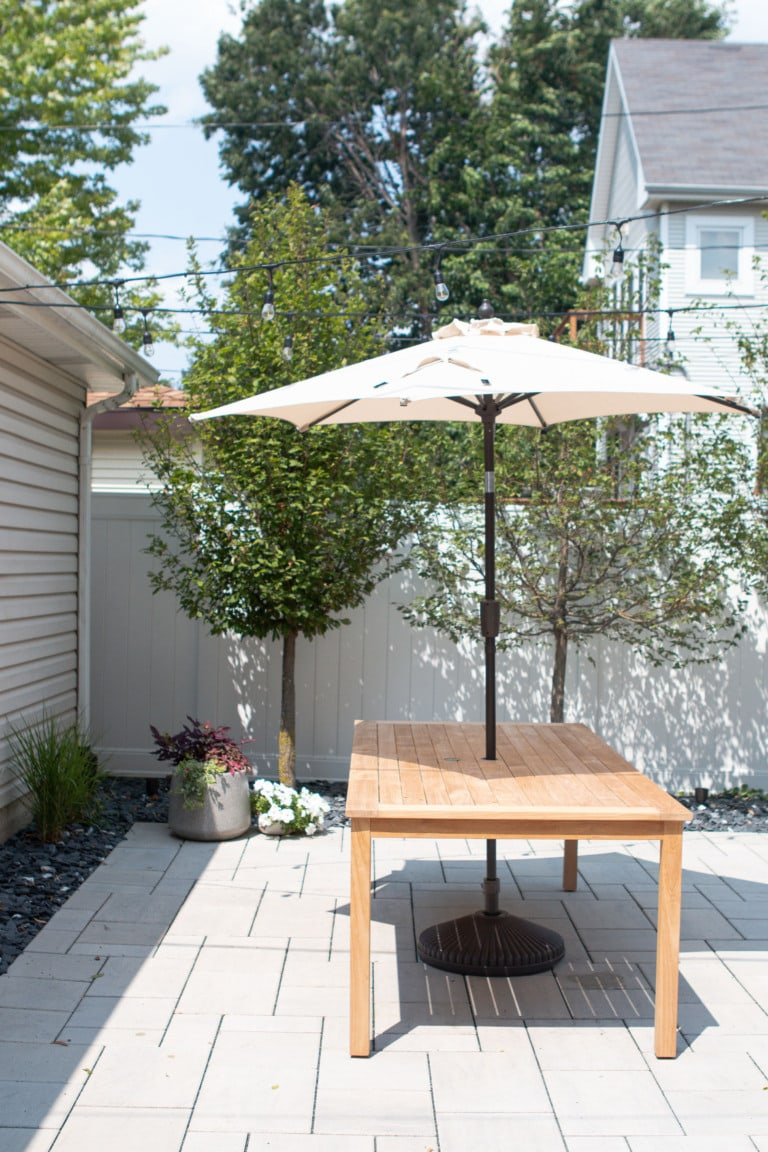 Our backyard projects to-do list