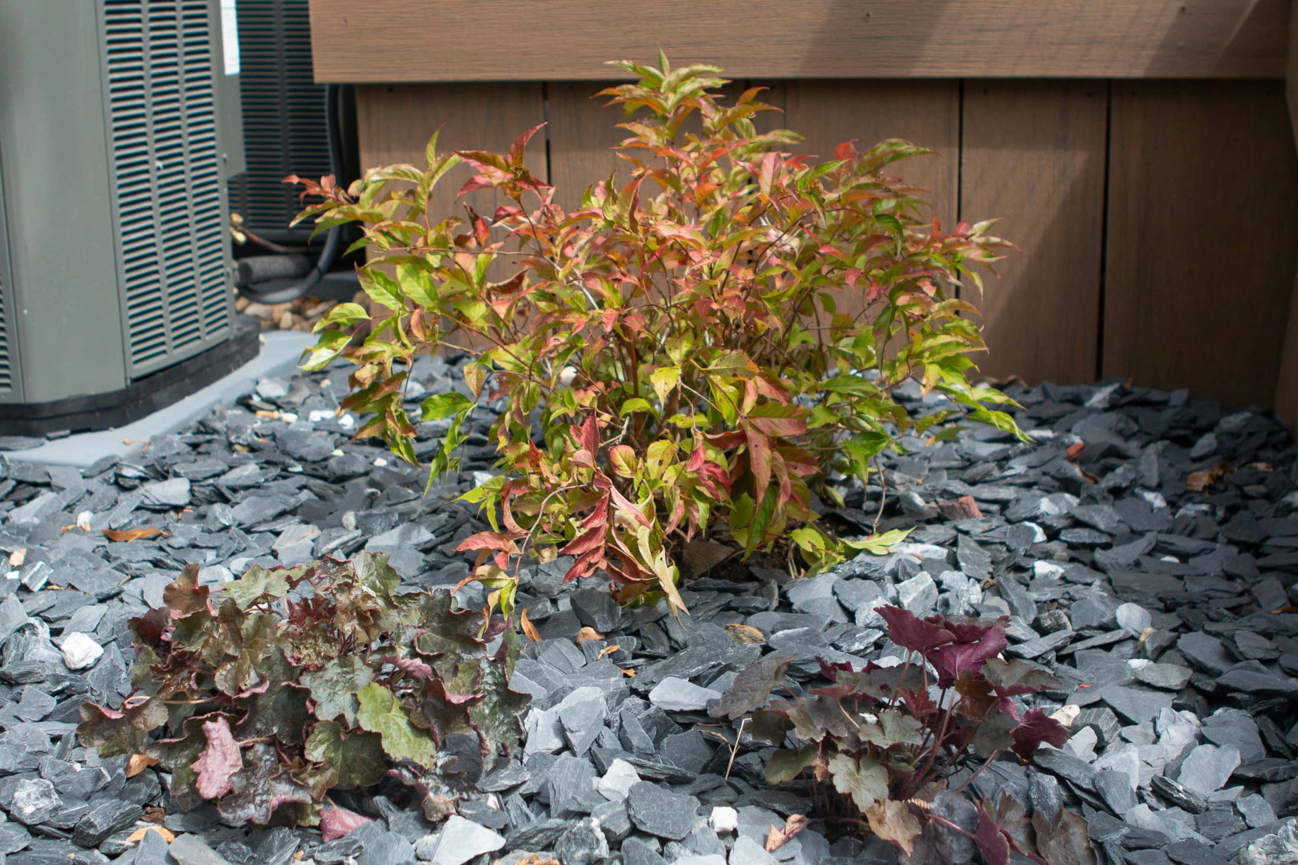 Gray rocks for our backyard landscaping