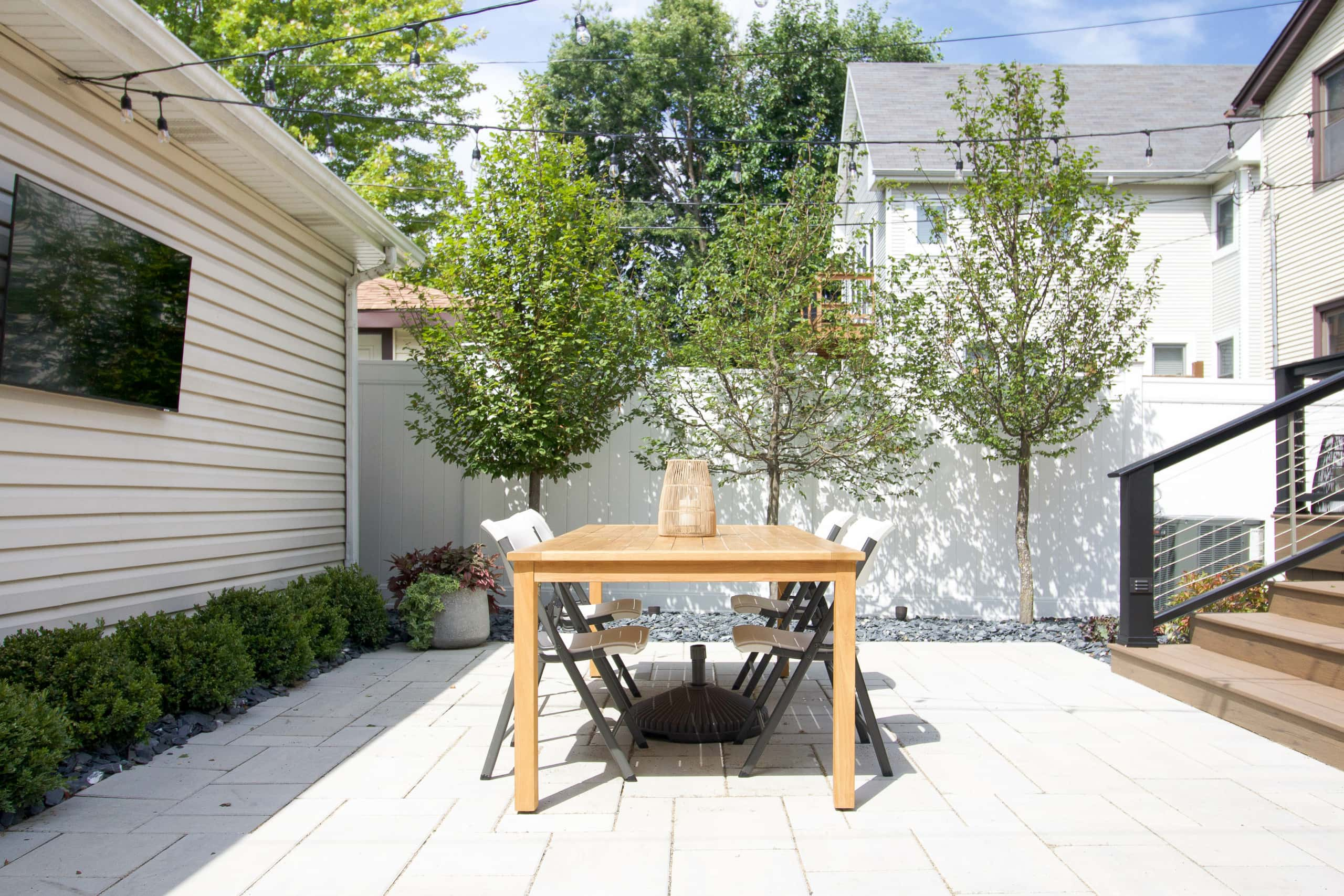 Adding three hornbeam trees to our backyard landscaping