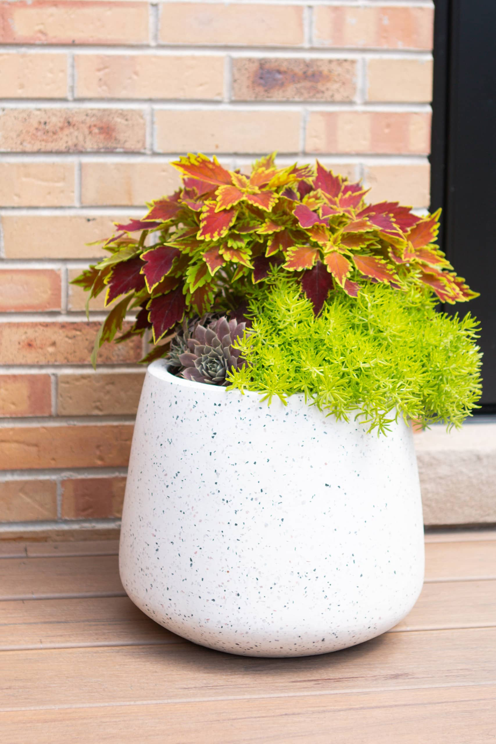 Adding planters with Fall plants to our backyard landscaping