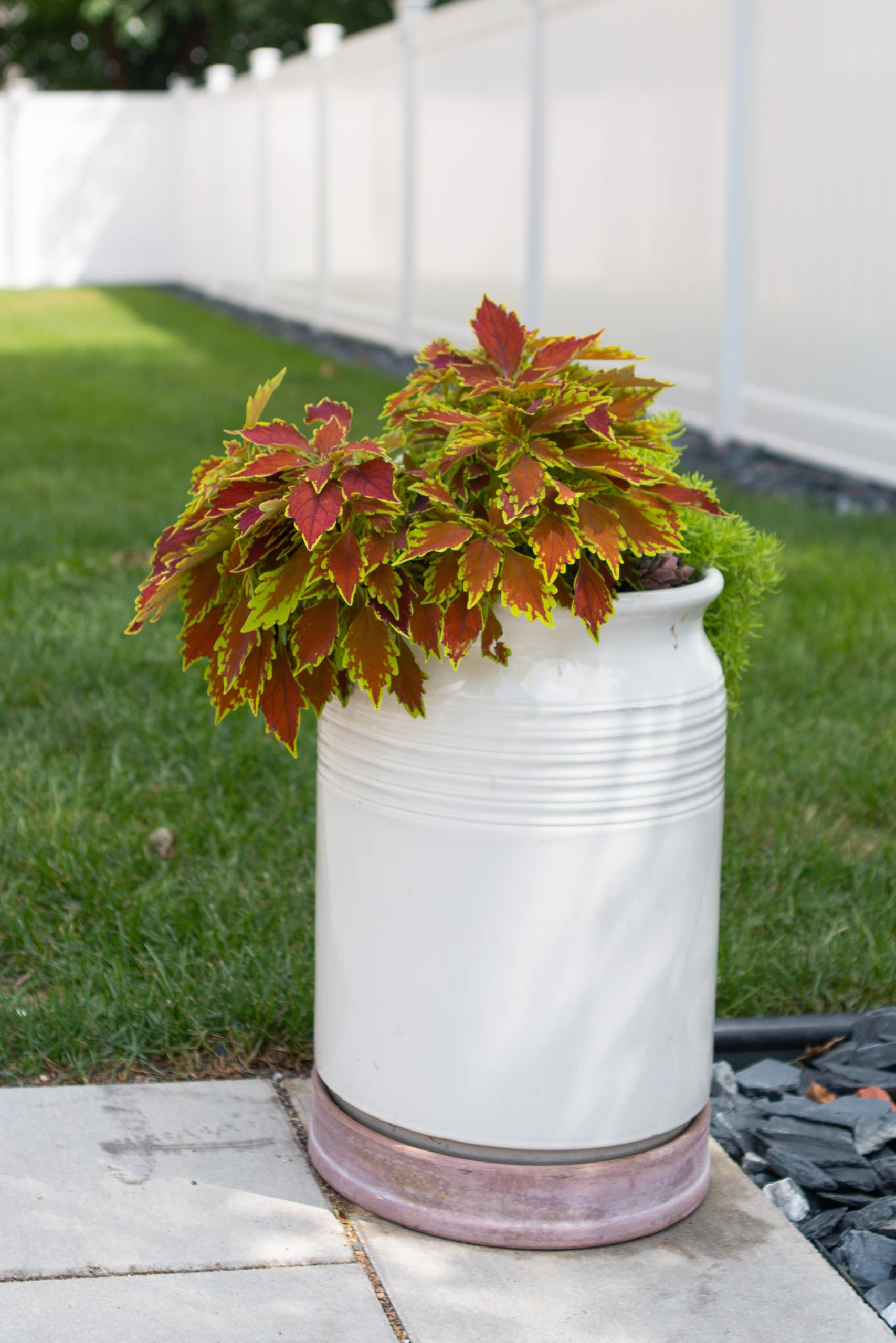 Adding planters to our backyard